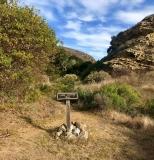 lobo-canyon-santa-rosa-island